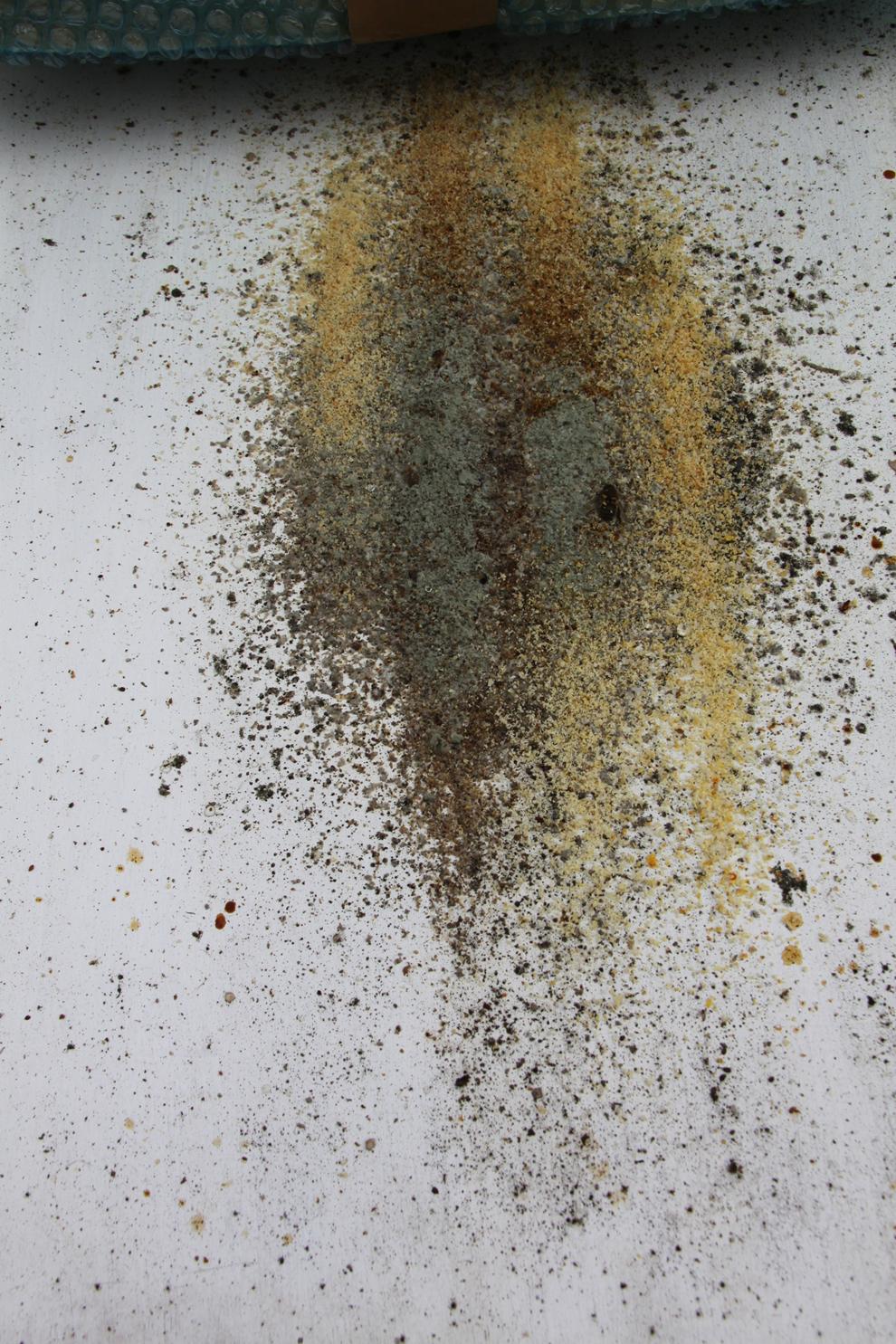 Plancher ruche moisi